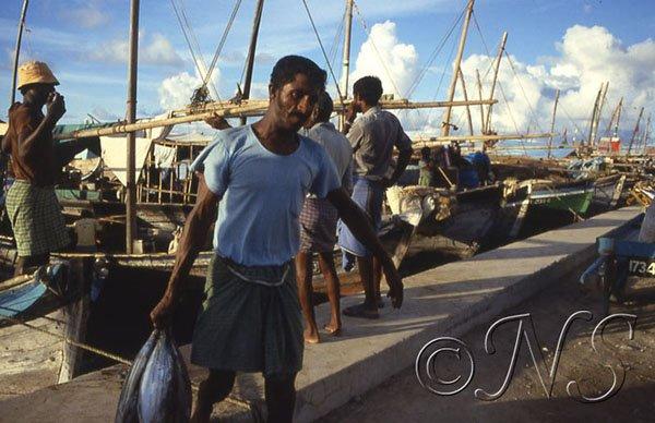 Le port de Malé, Maldives 1986