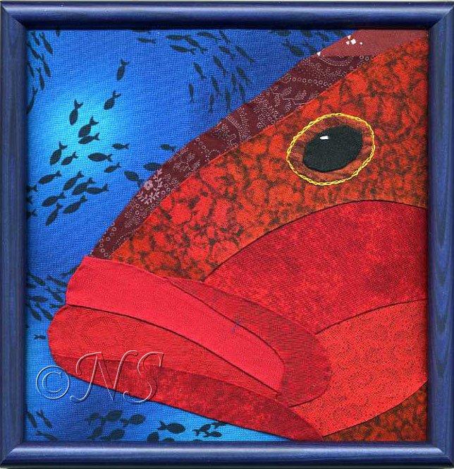Mérou des mers tropicales