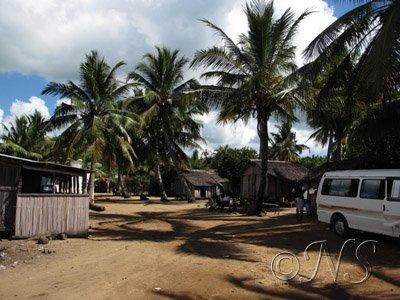 pour la réserve de Lokobé