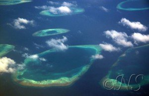 PLONGER DANS LES PASSES dans MALDIVES 2012 blog-passes-7-300x193