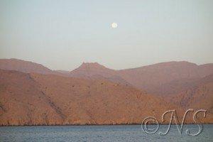 cotes Oman NS