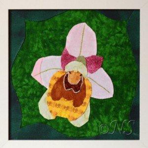 NS Ophrys tenthredinifera