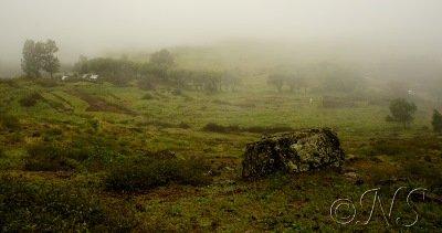 Cap vert blog (44)