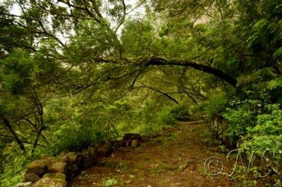 Cap vert blog (60)