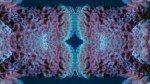 Eponge antillaise dans le bleu miroir