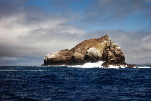 NS Plongée bouteille Gordon rock Santa Cruz Galapagos (65)-9